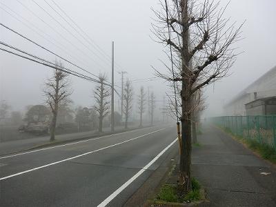 20120318_065810.jpg